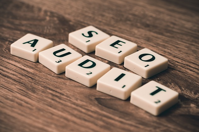 Audit SEO Lyon