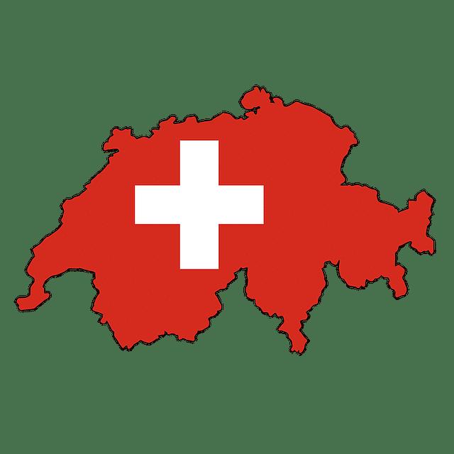 consultant seo suisse